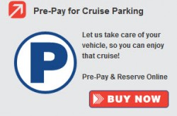 Pre-pay online parking
